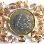 0030244 Crystal Celsian Facet 6 mm.-0