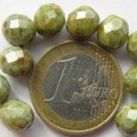 0100474 Kalk wit met  Groen terracotta facet 8 mm.-0