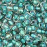 TR-11-0264 Inside-Color Rainbow Crystal/Teal Lined-0