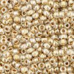 TR-11-0989  Gold-Lined Crystal-0