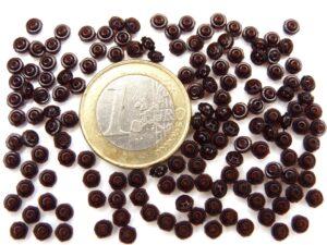0050048 Garnet Discvormig Schijfje 150 Pc.-0