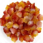FLC-03000-95601 Flower Cup Funky Apple 50 Pc.-0