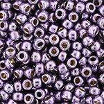 TR-11-PF0579 Permanent Finish – Galvanized Pale Lilac-0
