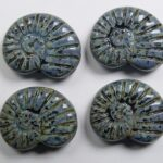 0010507 shell beads 17×13 mm jet dark picasso color 23980-86805